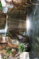 Falling Water by Cia81