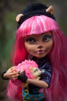 Monster High 13 Wishes Howleen Repaint. by PaulTheDoodlebug