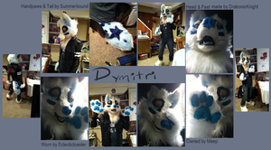 Fursuit: Dymitri by MystikMeep