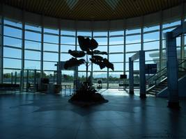 Tree inside the airport by K4nK4n