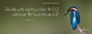 Surat An-Nur Aya 41 -  FB Cover by LMA-Design