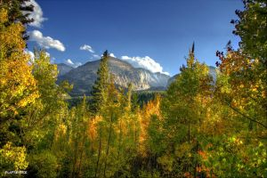 Rocky Mountain Fall Colors by MtnMama