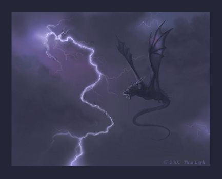The Storm's Rage by jaxxblackfox