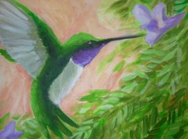 Hummingbird by thenumber42