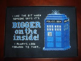 TARDIS: bigger on the inside! by xcarex