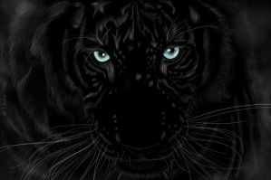 Black white tiger by CrimsonInHumanBlood