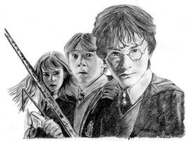 Harry Potter - The second year by janep