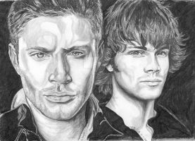 Supernatural 2009 by lupinemagic