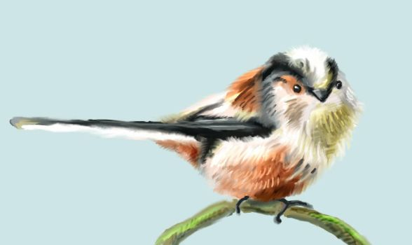 long tailed tit by Tianithen