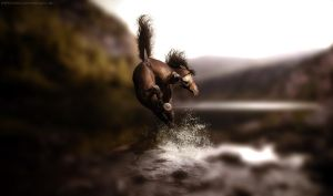 AT: Wildness by Idhrill