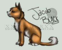 Jacob Black by XxCINDERxX