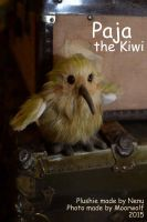 Paja the Kiwi by Nenu