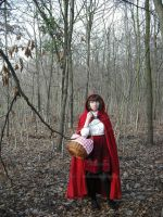 The Little Red Riding Hood by melle-sucre