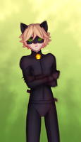 Chat Noir by RinkaManoha