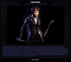 Catwoman Journal Skin by MrOrbital