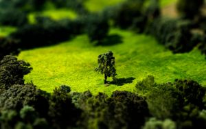 Tilt Shift Meadow 1920x1200 by Lagnar2010