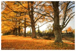 Autumn Cemetery by DennisChunga