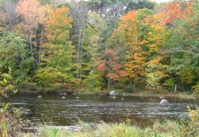 fall on the Contoocook by crazygardener