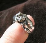 Tiny otters ring by somk