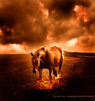 the colour of fire. by afterDETENTION