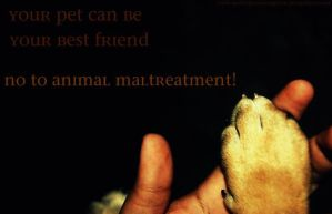 . No To Animal Maltreatment . by sweet-photographer