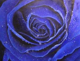 Blue Rose 2 by DanBurgessTheArtist