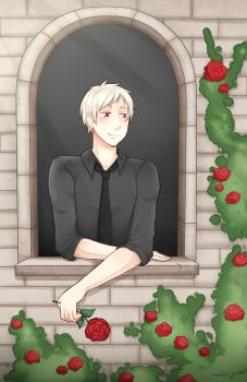 [APH] Prussia - Wall of Roses by Annington
