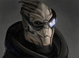Mass Effect - Garrus by PhoenixFuryBane