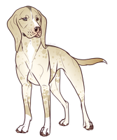 Coonhound Mix Adopt- Closed by PittMixx