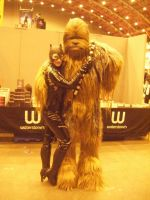 Catwoman Loves Chewbacca 4eva by Nerdpowers