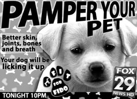 Pamper Your Pet Newsprint Ad by PatrickJoseph