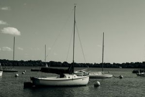 The Marina by MNgreen