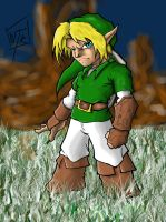 LINK by DominicanFlavor