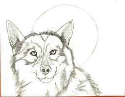 wolf by theGman0