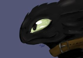 HTTYD 2 - Toothless by AzuraJae