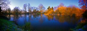 Mill Pond III by andy1349