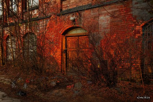 The old door by wiwaldi24