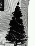 #~~B and W Xmas Tree~~# by dinoso