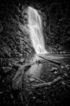 Water Flows BW by CainPascoe