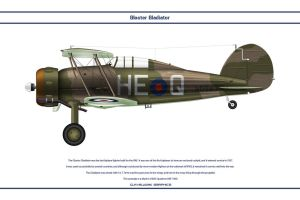 Gladiator 605 Sqn by WS-Clave