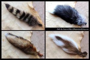 New tails - 5-11-13 by lupagreenwolf