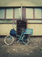 Bye cycle by Criquet