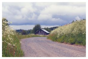 Finnish Countryside by xuvi