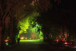 Cemetery at night 2 by Seth890603