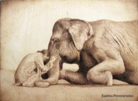 Copy of Colbert (the man with the elephant) by eugenia-89