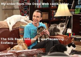 Sheldon Cooper Buys Ecstacy on The Deep Web by DrSheldonCooperPhD