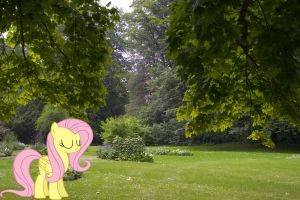 Fluttershy in the Park by HAchaosagent