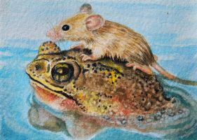 ATC A big hearted frog by waughtercolors