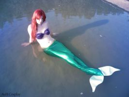 Ariel - The little mermaid by Amanda-Quinn