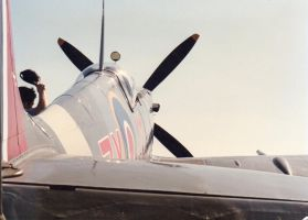 sweet lady, spitfire Mk VIII by angeloup
